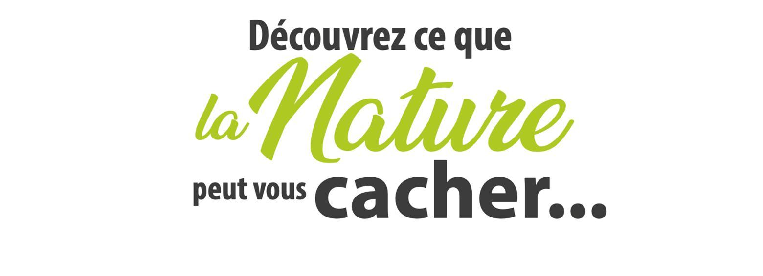 slogan biotopia